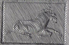 04-op-art-vasarelyvictor-zebra