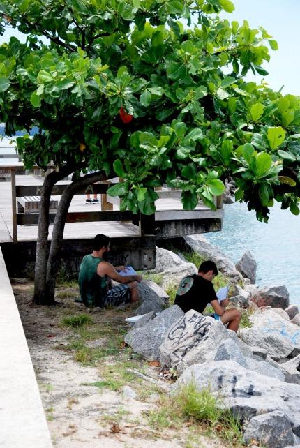 Amigos estudando sob a árvore do Canal de Vitória, ES. Fonte: Ingrid Nerys