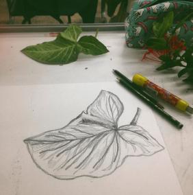 thaissa desenho