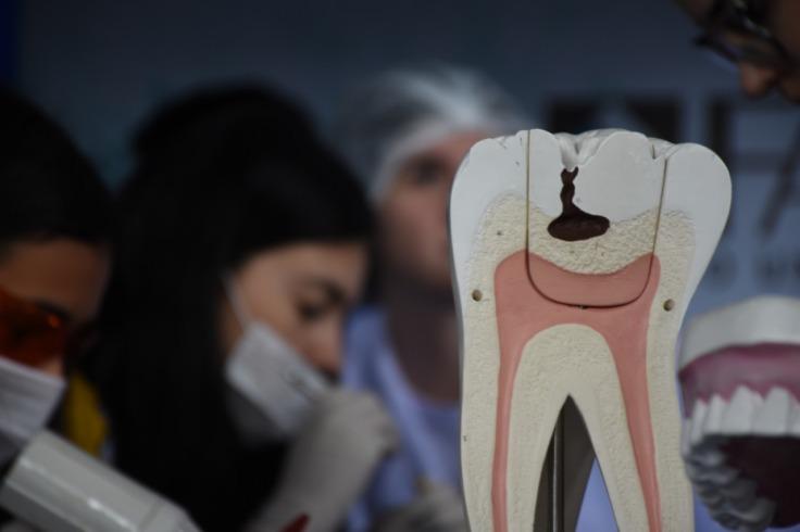 Estande de Odontologia no Simpósio de Profissões / Foto: Gustavo Rodrigues