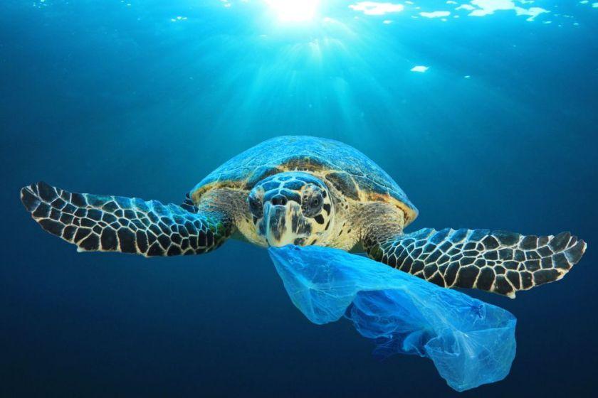 poluição plastico oceano