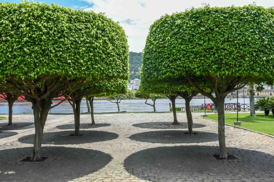 Fotos Museu Vale - Ambiente externo, arvores compondo a foto / Foto: Natan Oliveira