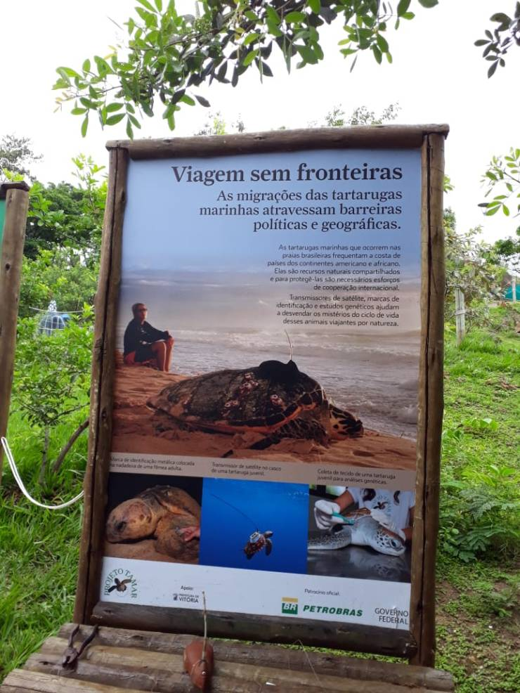 """Quadro """"Viagem sem fronteiras"""" presente no Tamar de Vitória. Fonte: Daniela Esperandio"""
