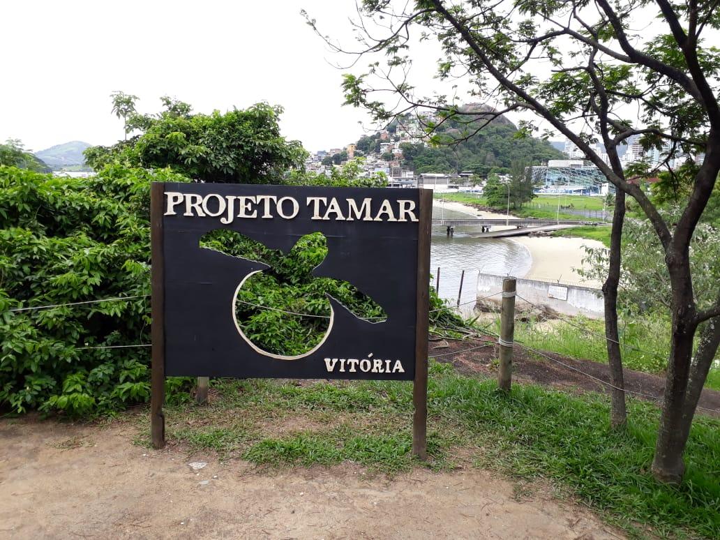 Placa Projeto Tamar em Vitória. Fonte: Daniela Esperandio